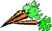 生野菜0798,生野菜,饮料食品,
