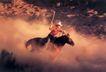 竞技比赛0195,竞技比赛,运动,马座 马鞭 挥舞