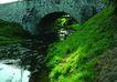 环保措施0057,环保措施,工业,污水 草 桥墩