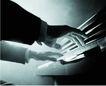 古典音乐0073,古典音乐,艺术,端正 手指 琴键