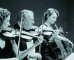 古典音乐0079,古典音乐,艺术,乐队 提琴 三重奏