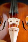 小提琴0025,小提琴,艺术,音乐 艺术 美学