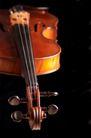 小提琴0033,小提琴,艺术,