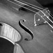小提琴0054,小提琴,艺术,