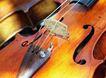小提琴0060,小提琴,艺术,柔和光线 琴身 琴弦