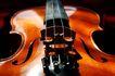 小提琴0063,小提琴,艺术,琴弦 木质 琴声