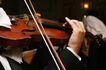 小提琴0068,小提琴,艺术,乐手 拉琴 悠扬