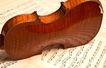 小提琴0073,小提琴,艺术,竖立 琴腰 闲置