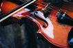 提琴遐想0051,提琴遐想,艺术,