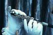 提琴遐想0055,提琴遐想,艺术,艺术遐想 白手套 长笛