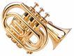 西式乐器0009,西式乐器,艺术,金色 圆管 喇叭