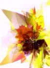 3D图形0023,3D图形,电脑合成,图形 花朵 鲜艳