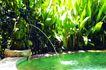 巴黎岛温泉0189,巴黎岛温泉,休闲保健,温泉 水注 水池