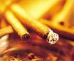 品味人生0094,品味人生,生活方式,烟头 烟灰缸 吸烟