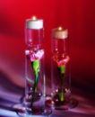 温馨烛光0007,温馨烛光,生活方式,火苗 火种 小火光