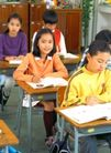 小学教育0026,小学教育,儿童教育,学生 学心 写作业