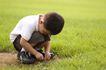 儿童玩耍0039,儿童玩耍,儿童教育,草地 绿色 玩耍