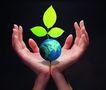 电子商务0077,电子商务,未来科技,萌芽 绿叶 生长