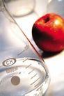 生化科技0034,生化科技,医学医药,苹果 水果 容器