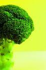鲜味食物0033,鲜味食物,农业,花菜 绿色 农业