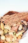 鲜味食物0035,鲜味食物,农业,稻穗 土豆 粮食