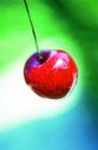 鲜味食物0036,鲜味食物,农业,红果 苹果 红富士