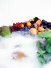 鲜味食物0047,鲜味食物,农业,
