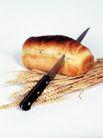 鲜味食物0048,鲜味食物,农业,