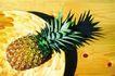 鲜味食物0081,鲜味食物,农业,菠萝 热带 鲜味