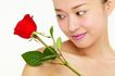 健康美容0061,健康美容,休闲保健,玫瑰 女士 爱情