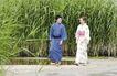 生活剪影0064,生活剪影,休闲保健,日本 情侣 散步