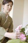 生活剪影0096,生活剪影,休闲保健,鲜花 花朵 插花