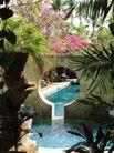 醉心巴厘岛SPA0065,醉心巴厘岛SPA,休闲保健,花朵 庭院 水池