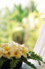 醉心巴厘岛SPA0158,醉心巴厘岛SPA,休闲保健,花儿