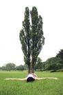 休闲时光0023,休闲时光,休闲保健,草地 女生 绿树