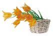 花饰小品0061,花饰小品,休闲生活,花篮 鲜花 花香