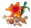 花饰小品0074,花饰小品,休闲生活,螺丝 海螺 鲜花
