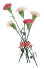花饰小品0092,花饰小品,休闲生活,花束 野花 自然