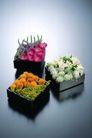 情人礼品0052,情人礼品,休闲生活,礼品 精致礼物 各色花朵