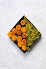 情人礼品0062,情人礼品,休闲生活,盒盖 雏菊 黄花