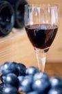 葡萄酒0035,葡萄酒,休闲生活,平面图 平面设计 果粒