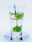 花草茶饮0022,花草茶饮,休闲生活,杯子 树叶 矿泉水