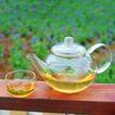 花草茶饮0069,花草茶饮,休闲生活,容器 凉茶 绿色