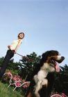 女性宠物0047,女性宠物,休闲生活,遛狗