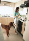 女性宠物0075,女性宠物,休闲生活,橱房 制做 晚餐