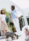 女性宠物0076,女性宠物,休闲生活,贵妇 街头 遛狗