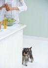 女性宠物0090,女性宠物,休闲生活,相伴 食物 成长