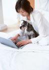 女性宠物0093,女性宠物,休闲生活,卧室 上网 小狗