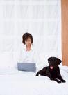 女性宠物0098,女性宠物,休闲生活,床上 白领 笔记本