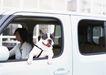 家庭宠物0046,家庭宠物,休闲生活,开车